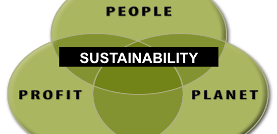 The Sustainability Challenge and How to Get Buy In